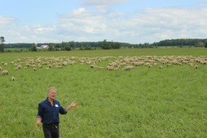 Chris Boettcher showing off his sheep and their grazing lands