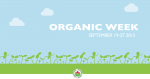 OWeek-web-banner