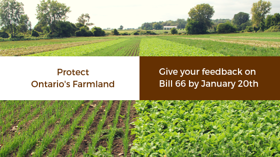 Picture of farmland. Text reads Protect Ontario's Farmland. Give your feedback on Bill 66 by January 20th.