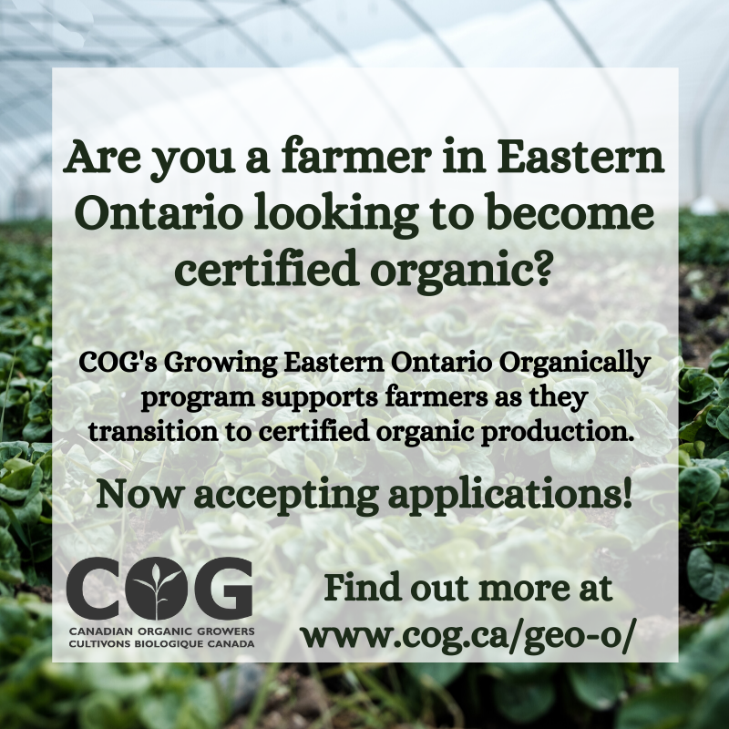 Growing Eastern Ontario Organically