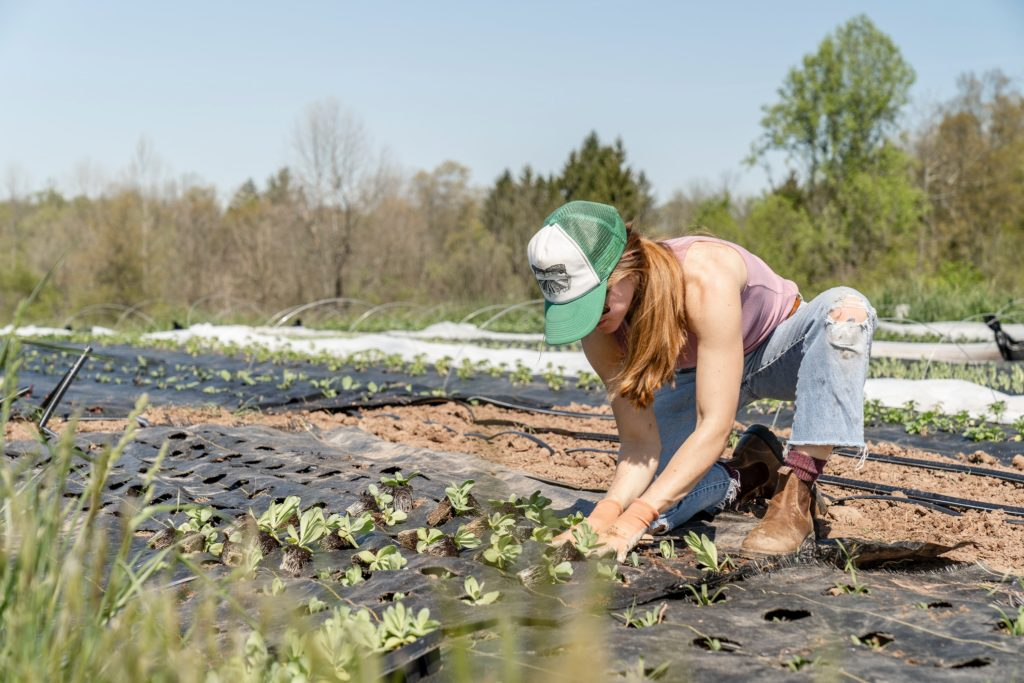 New Wage Subsidy Funding for Hiring Youth in Agriculture